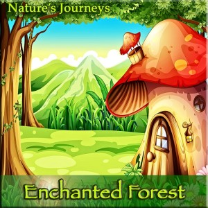 Enchanted Forest Guided Relaxation