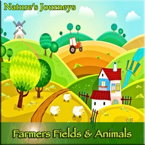 farmers fields guided relaxation
